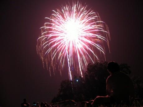 Fireworks Viewer