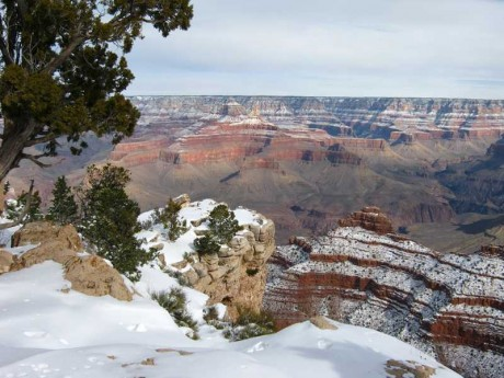 Snow on the Canyon
